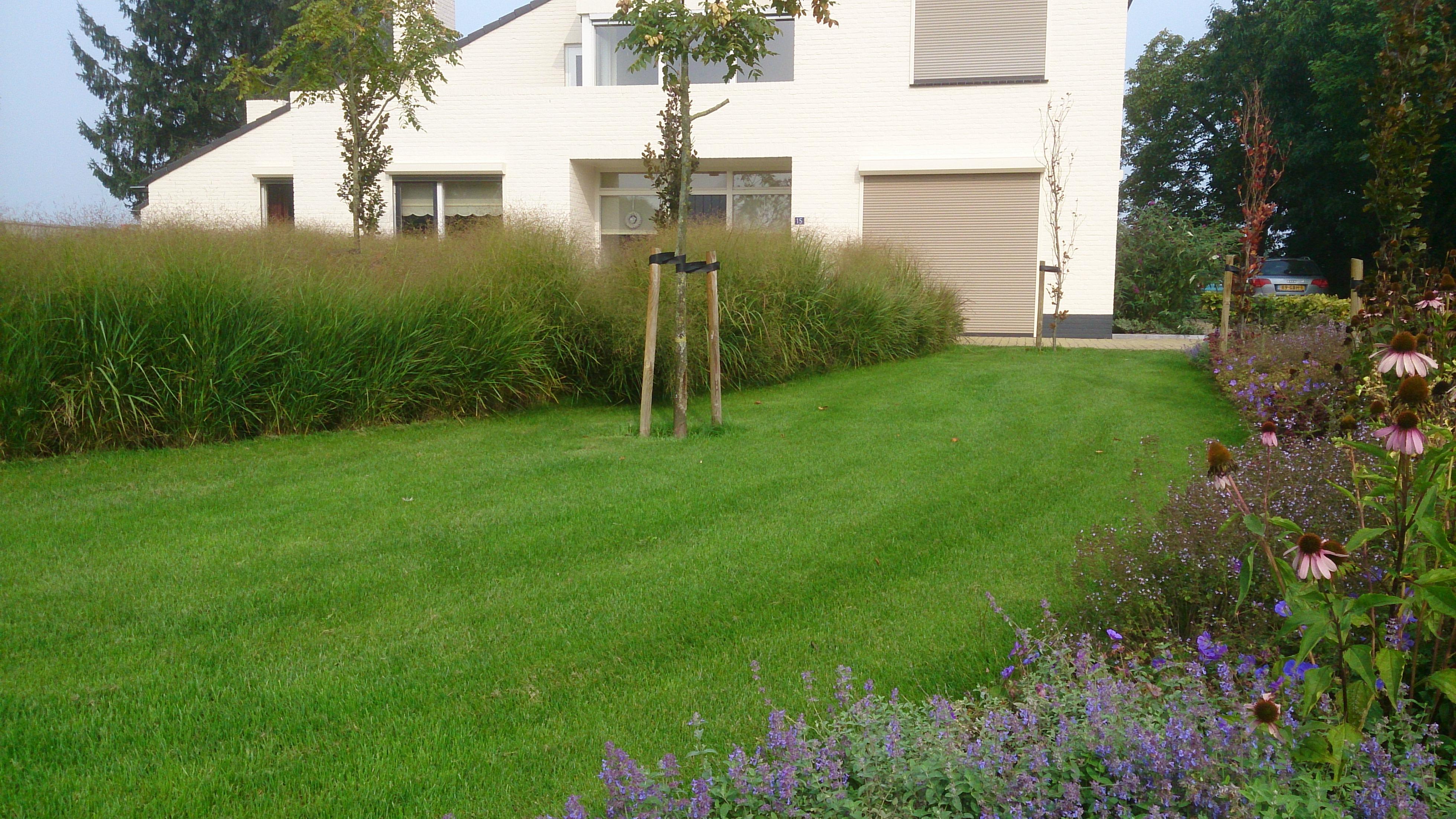 Voortuin strak grassen tuin t siergrassen tuin en zoeken for Voortuin strak modern
